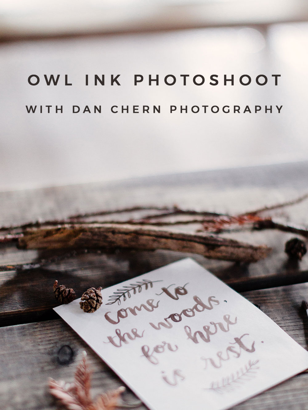 Owl Ink Photoshoot with Dan Chern Photography