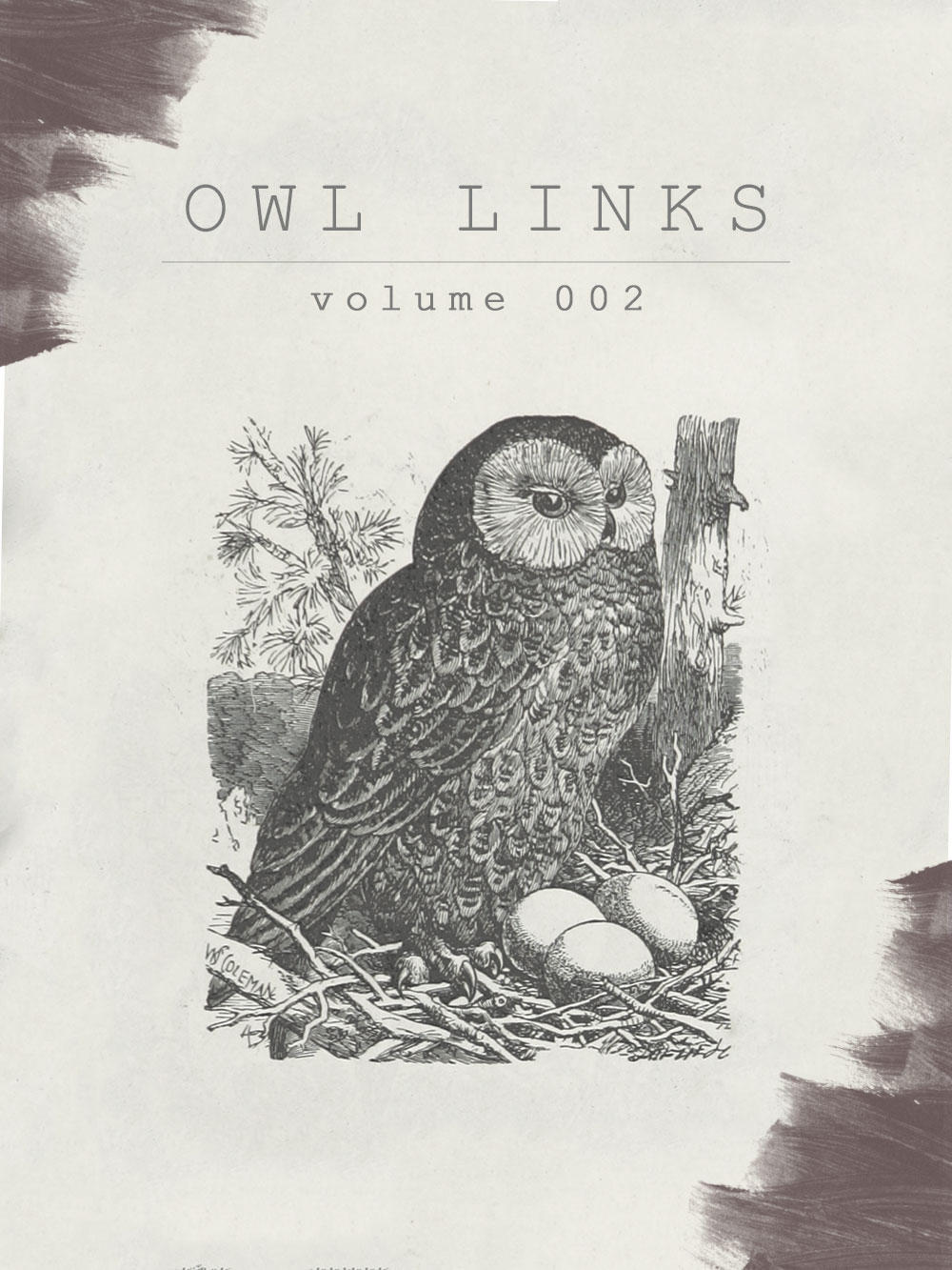 Owl Links: Volume 2